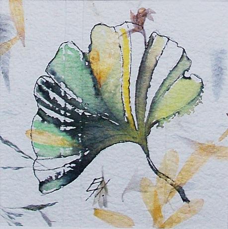 feuille de ginkgo, aquarelle et encre de Chine sur papier Moulin Richard de Bas