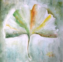 ginkgo, watercolour